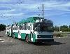 В Барнауле пройдет конкурс профмастерства среди водителей троллейбусов.