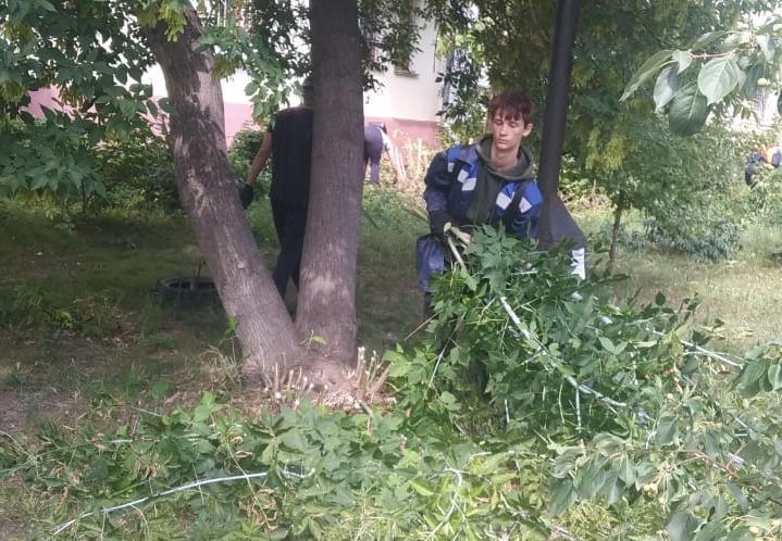 Студенческие экологические отряды приводят в порядок зеленые зоны и улицы Барнаула